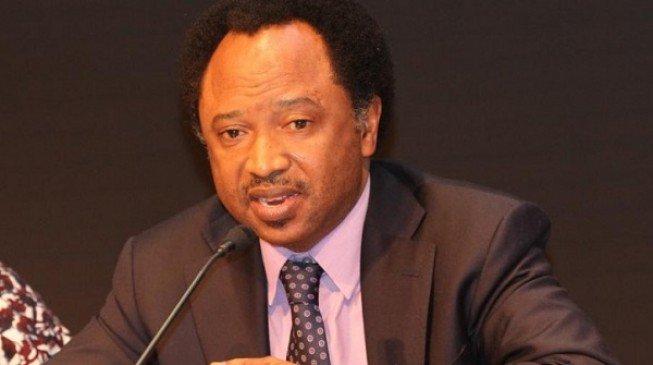 """Buhari Will Be APC Last President"" – Shehu Sani"